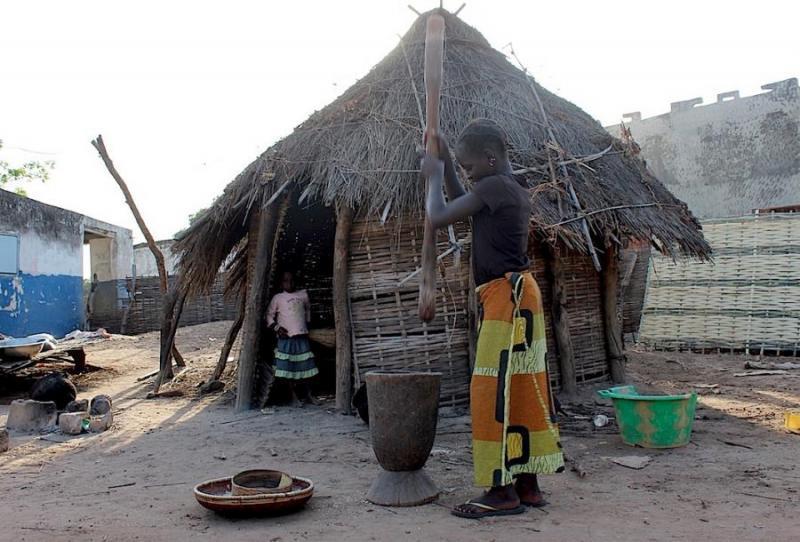 Ibrahima wade nommé nouveau dg du plan sénégal emergent xibaaru